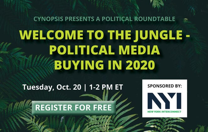 WELCOME TO THE JUNGLE - POLITICAL MEDIA BUYING IN 2020